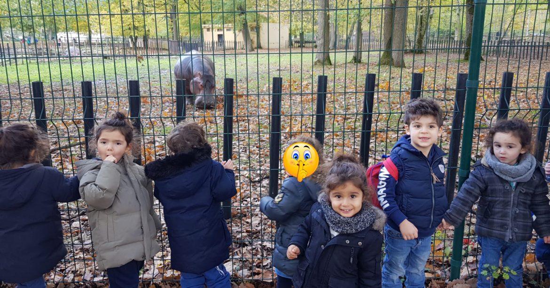 Zoo d'Atilly Gan1